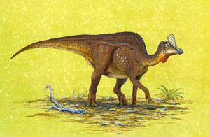 Dibujo figurado del nuevo dinosaurio (Foto: 'Journal of Vertebrate Paleontology'
