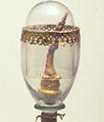 Uno de los dedos de Galileo conservados en Italia