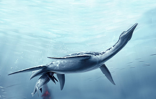plesiosaurio.jpg