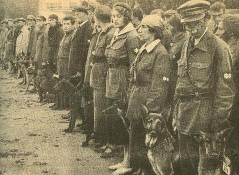 Perros soviéticos durante su entrenamiento WIKIMEDIA