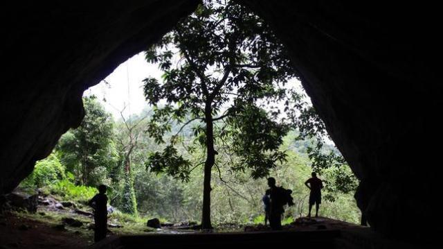 Patrick Roberts El equipo de investigadores en las selvas de Sri Lanka