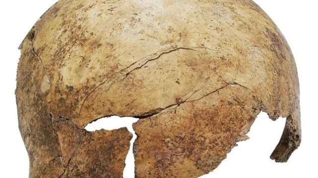 Christian Meyer El cráneo (que incluye un golpe) de uno de los cuerpos hallados, Tenía ocho años al morir