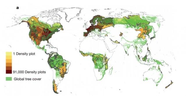 Distribución de la densidad de árboles en distintas zonas del globo - Foto Crowther et al.