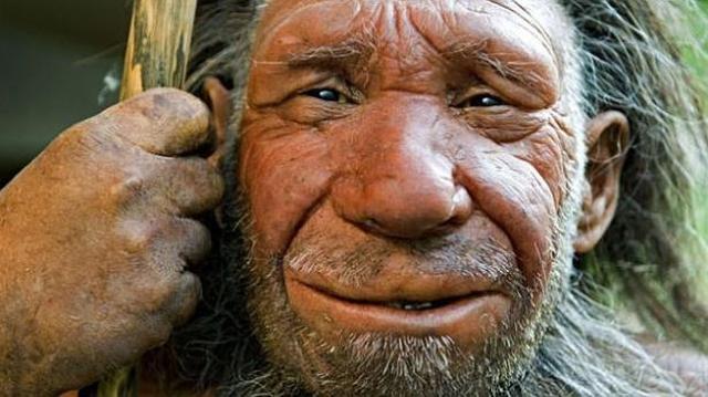 neanderthals--644x362