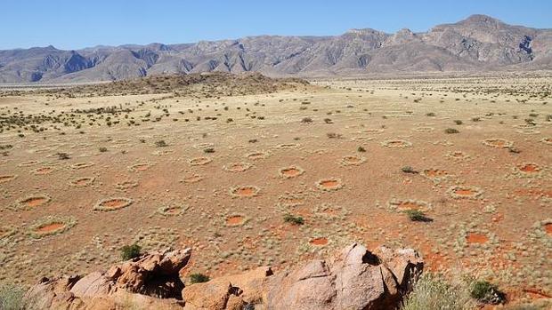 Vista aérea de los misteriosos círculos de hadas de Namibia - Stephan Getzin/UFZ