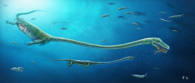 Reconstrucción de 'Dinocephalosaurus' cazando y del embrión en su abdomen DINGHUA YANG/JUN LIU